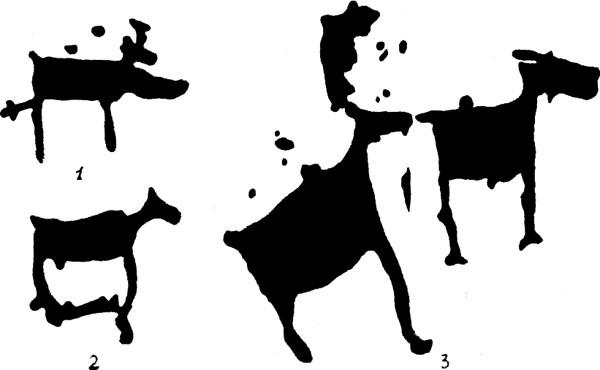 Различные виды ранения лосей (петроглифы)