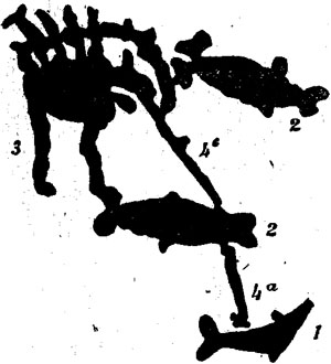 Петроглифы. Сложная композиция морского промысла